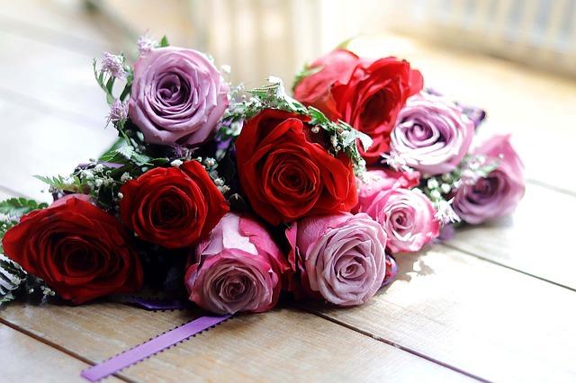 flower-2407504_640